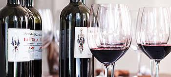 Weintipp Barbera