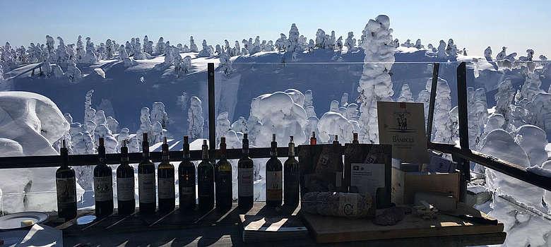 Weine von Le Fonti, Fattoria Rignana, Palagio di Panzano in Lappland