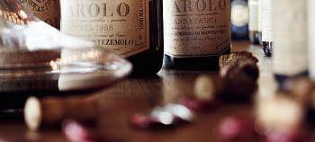 Weintipp Barolo