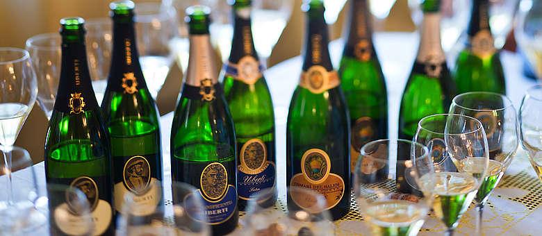 Flaschen und Sektgläser-Aufreihung - Verkostung der Franciacorta vom Weingut Villa von Brut bis Extra Brut, Jeder Champagner für sich ein Monument und Ausdruck der Rebsorten Chardonnay und Pinot Noir