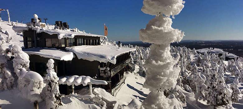 Chianti Classico reist bis nach Lappland um die Herzen zu wärmen, die Begeisterung für den Gallo Nero ist ansteckend...