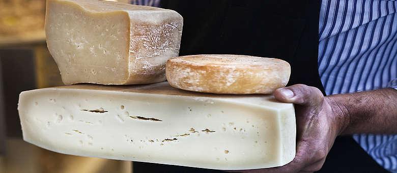 Das Weinland Friaul ist auch bekannt für seine leckeren Kuhmilchkäse, die bei kleinen Affinateuren auf Holzregalen heranreifen, der Montasio ist der bekannteste Kuhmilchkäse