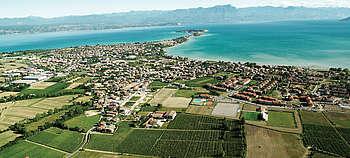 Lugana - Der erfolgreiche Weißwein vom Gardasee in Norditalien