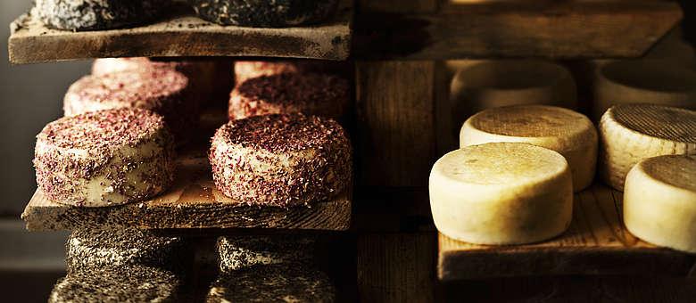 Das Weinland Friaul ist auch bekannt für seine leckeren Kuhmilchkäse, die bei kleinen Affinateuren auf Holzregalen heranreifen
