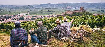 Der Weißwein des Veneto - Soave Classico aus dem Hügelgebiet bei Verona