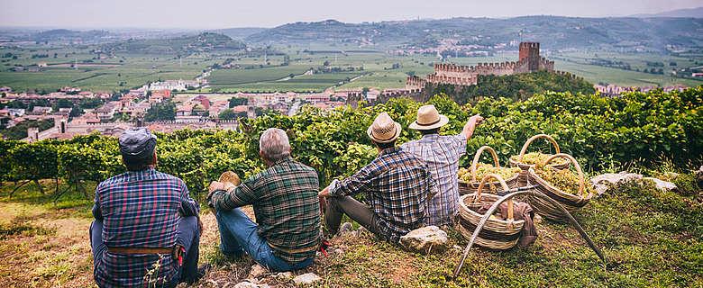 italien-wein-Venetien-Soave-Weißwein-WEingüter-Winzer-regionale Küche