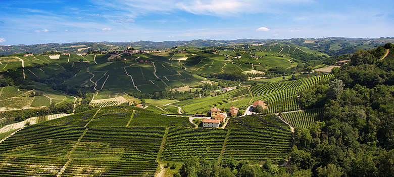 Luftaufnahme der Weinberge der Gegend Serralunga im Barolo-Gebiet der Kellerei Vite Colte in der Langhe im Piemont
