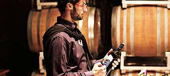 Amarone, Ripasso, Valpolicella - Alles Wissenswerte zu den Weinen und dem Anbaugebiet nahe Verona