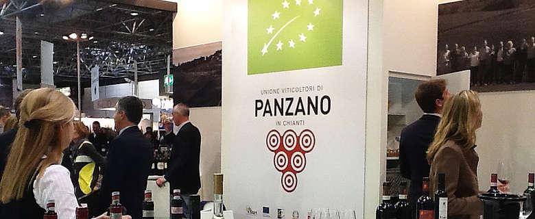 Italien-Wein-Toskana-Chianti-Panzano-Impressionen von Weingütern und Winzern