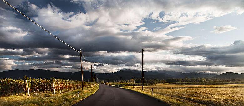 Landschaft mit Weinbergen in der Nähe Von Udine im Colli Orientali del Friuli und Grave-Weinbaugebiet, Wolken- und Farbspiel der Extraklasse
