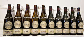 Bertani - Amarone Ikone