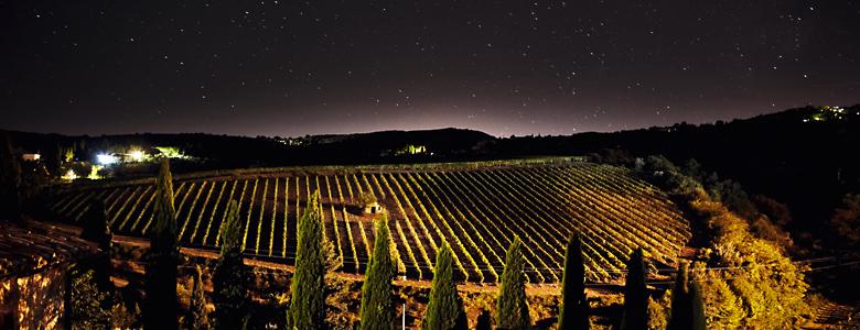 Italien, Brunello, Toskana, Landschaft mit Zypressen und Weinreben in der Nacht mit spektakulärem Sternenhimmel, Weingut Costanti, Montalcino
